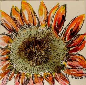 "Sunflower, watercolor and ink, matted and framed, 6""x6""   $50"